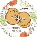 Nottinghamshire Dormouse Group Logo